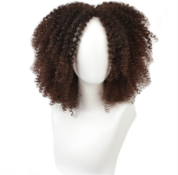 Afro Curly Synthetic Hai Wig