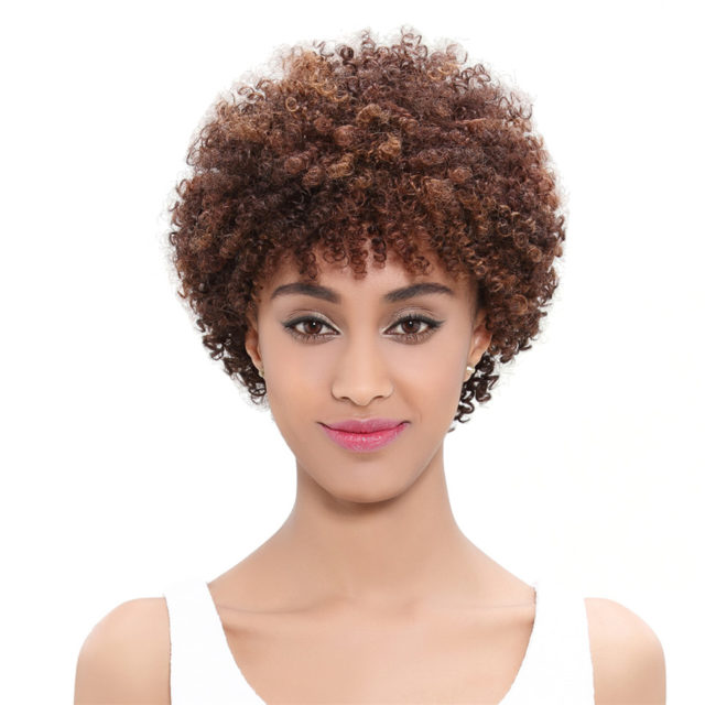Brown Afro Human Hair Wig
