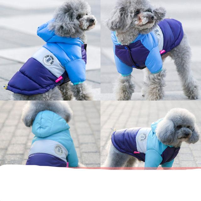 Striped Waterproof Pet's Coat